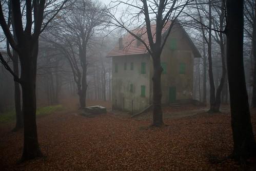 Palmasco vieni c 39 una casa nel bosco for Case moderne nei boschi