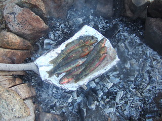 Cooking seasoned fish
