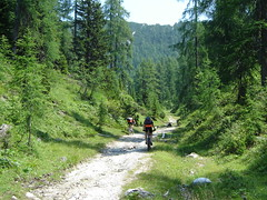 Cycling in Pohorje