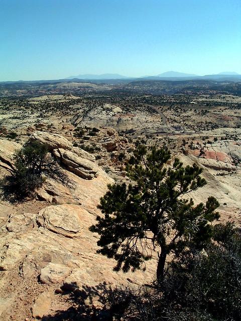 Desert Overlook, Escalante