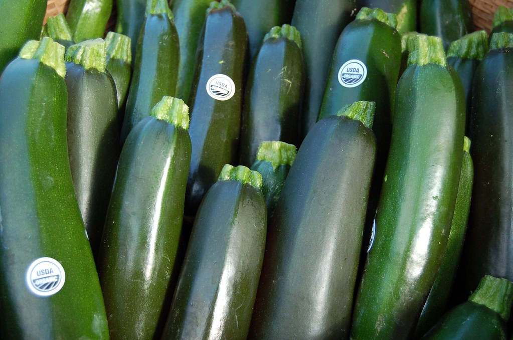 zucchini summer squash, includes skin, cooked, boiled, drained, with salt