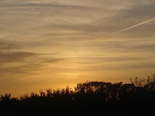 ireland sunset sky orange sun sunlight sunshine saint atardecer bay zonsondergang tramonto sonnenuntergang dusk himmel céu pôrdosol ciel cielo helens wexford 空 日落 ég coucherdesoleil 天空 langit gökyüzü zachód słońca puestadelsol günbatımı закат ηλιοβασίλεμα غروب 일몰 天 небо niebo taivas 日没 하늘 obloha سماء 섬 유럽 시 bầu trời matahariterbenam hoànghôn 아일랜드 พระอาทิตย์ตกดิน paglubogngaraw hemelgewelf सूर्यास्त 아일랜드섬 서유럽 সূর্যাস্ত வானம் аспан