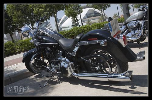 Harley-Davidson-17