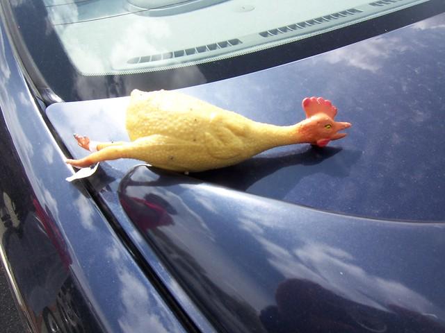 flickin' chicken rubber chicken