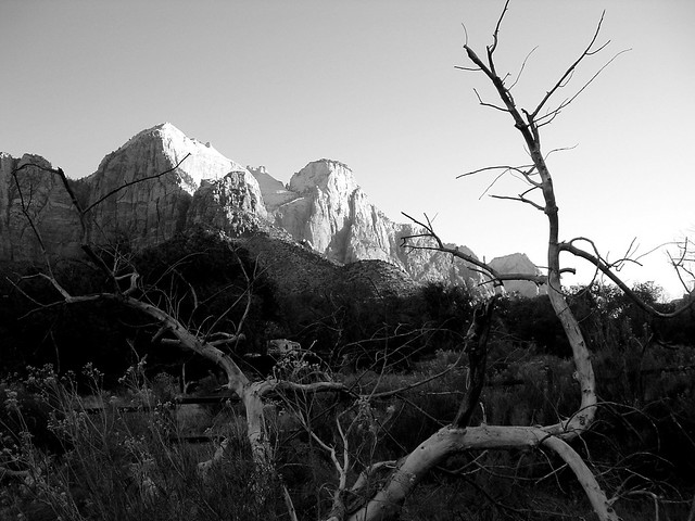 Zion Morning, Zion NP