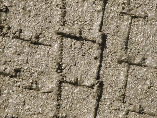 Mud Tire Tracks Tire Tracks In Mud | F...