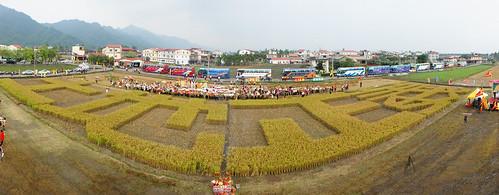 2010年底,農地徵收受害的農民團體在彰化農地,利用收割順序割出土地正義字樣。(出處:台灣農村陣線)