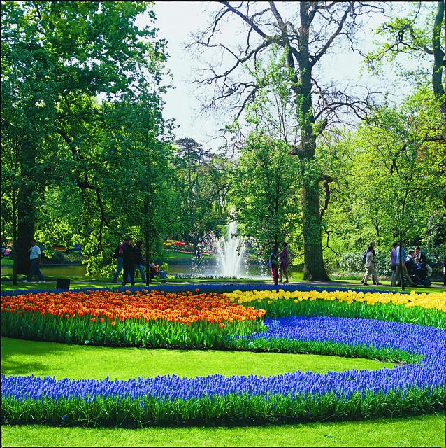Tulip Amsterdam Keukenhof: Keukenhof Tulip Gardens Tour, Amsterdam