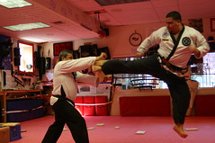 kickboxing(0.0), sanshou(0.0), hapkido(1.0), sports(1.0), martial arts(1.0), strike(1.0), chinese martial arts(1.0),