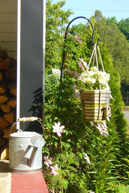8 watering can and hanging plant on front porch flickr for Front porch hanging plants