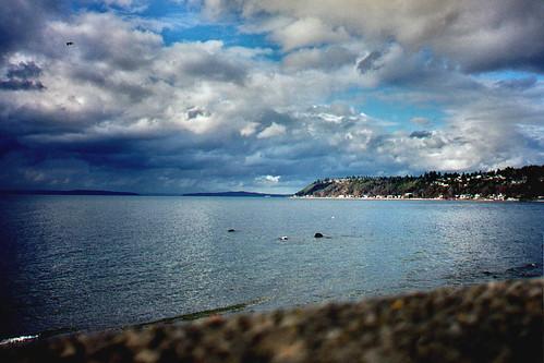 landscape pugetsound idr seahurstpark
