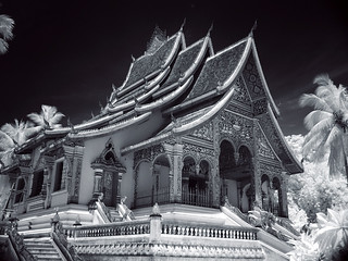 royal temple LP IR