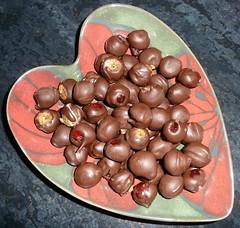 chestnut, nuts & seeds, food,