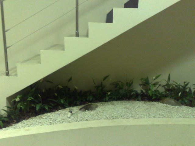 escada jardim embaixo:Jardim embaixo de escada