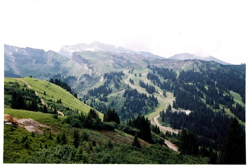 trees panorama france mountains alps scale mountainbike downhill hills vista slope morzine