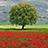 the Raccontare la natura ( Armonia e contraddizioni ) group icon
