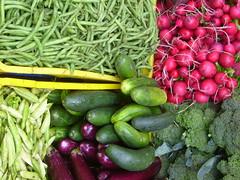 garden(0.0), plant(0.0), vegetable(1.0), produce(1.0), food(1.0), local food(1.0), radish(1.0),