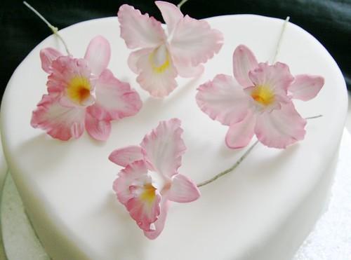 Cake Decoration Using Icing Sugar : Icing sugar cake decoration 2009 Birthday Decoration Ideas