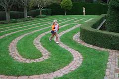 outdoor structure(0.0), field(0.0), labyrinth(0.0), baseball field(0.0), road surface(0.0), flooring(0.0), backyard(1.0), shrub(1.0), garden(1.0), grass(1.0), artificial turf(1.0), yard(1.0), landscaping(1.0), lawn(1.0), walkway(1.0),