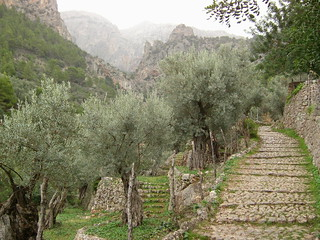 Cuber to Soller walk
