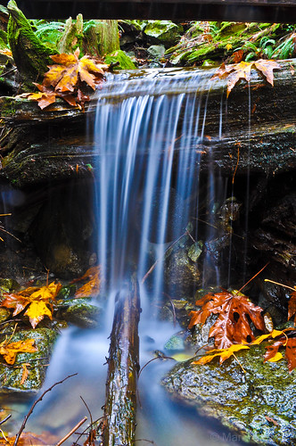 longexposure autumn leaves waterfall britishcolumbia mission