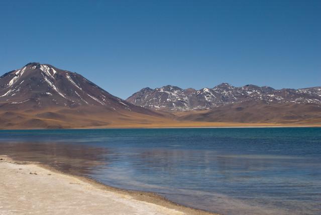 Laguna de Chaxa. Salar de Atacama. Región de Antofagasta. Chile