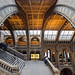Natural History Museum 2 by Philipp Klinger Photography