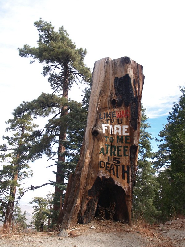 There were a number of these painted tree stumps and rocks along the road, all warning of FIRE.