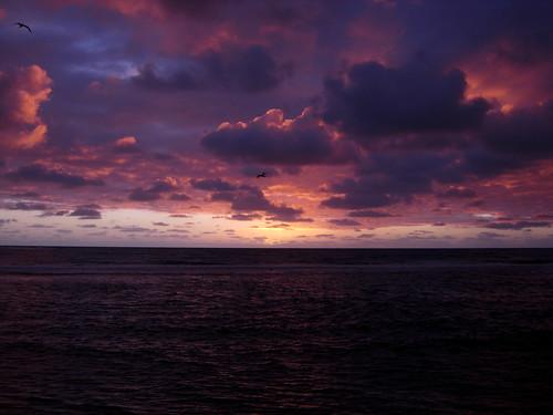 colors landscape dawn polynesia tahiti polinesia frenchpolynesia foiadelli hitiaa