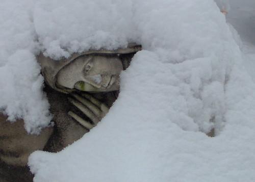 coperta di neve