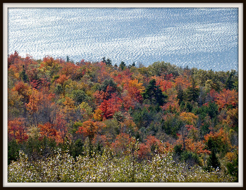 autumn nature maine acadia acadianationalpark