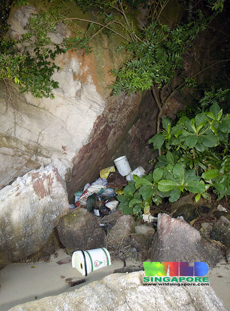 Stashing litter in our natural cliffs