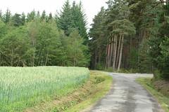 Mixed land use
