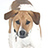 the Brown & White Dogs group icon