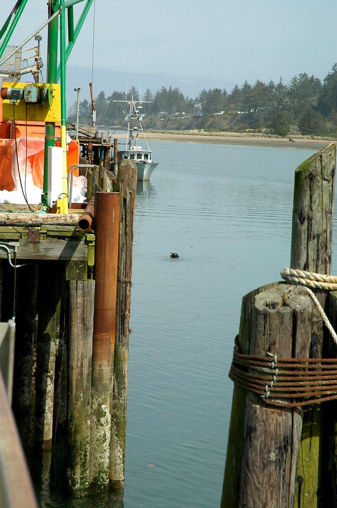 Charleston fishing pier boat ramp map oregon mapcarta for Charleston fishing com