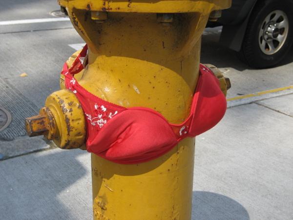 bra on hydrant.jpg