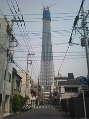東京スカイツリー (31)
