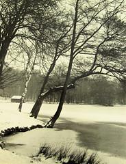 Manor Farm Park, Northfield, Birmingham, 1969