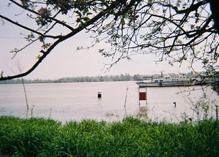 Flooded bank of Danube, Braila, Romania, 2006