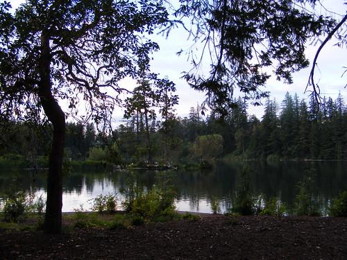 washington wa washingtonstate kingcounty maplevalley unature kingcountywa maplevalleywa lakewildernesspark vikisuzan permissionrequiredtousephotos