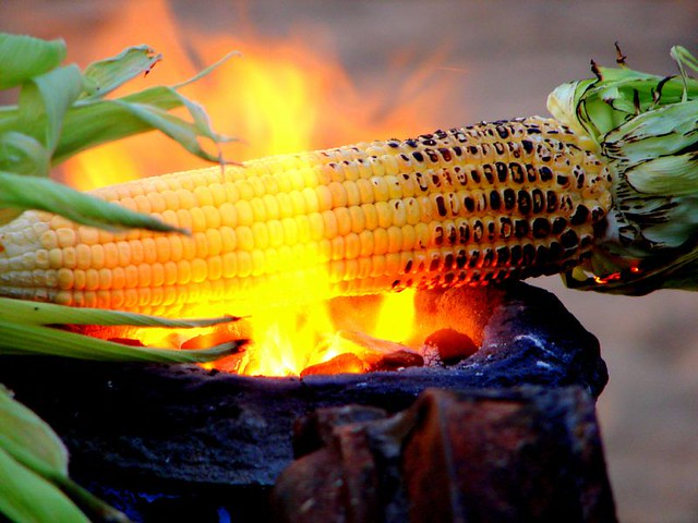 roasted corn....