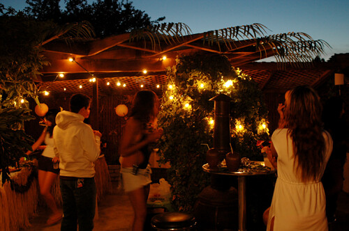 backyard luau fremont by jazminrjones flickr photo sharing