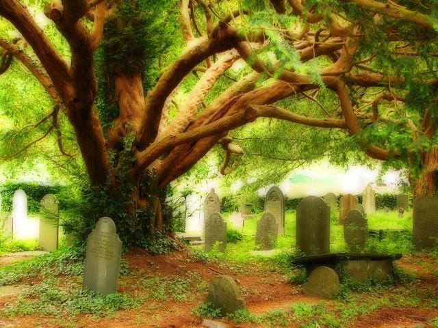 Betws-y-coed Cemetery