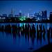 The Portland Blues