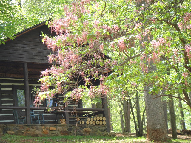 Original CCC built log cabin at Fairy Stone State Park