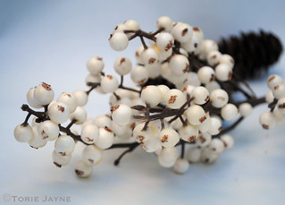 Cream berries