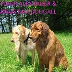 ARTHUR ALEXANDER + ANGUS MACDOUGALL
