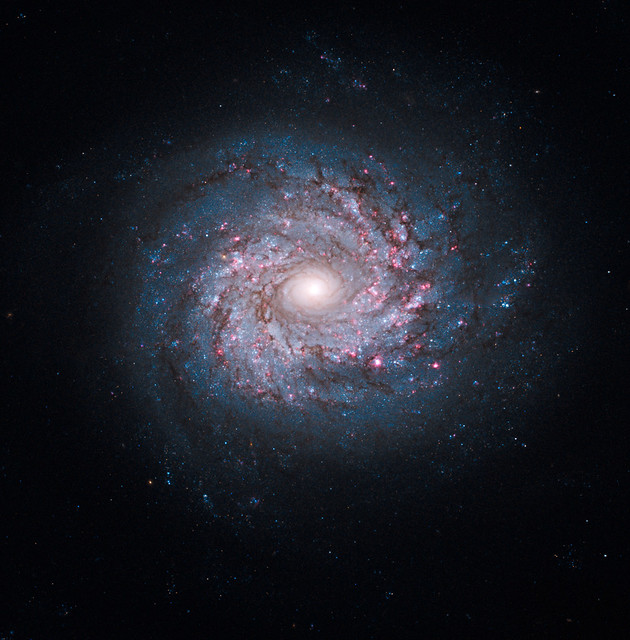 Spiral Galaxy NGC 3982 from Flickr via Wylio