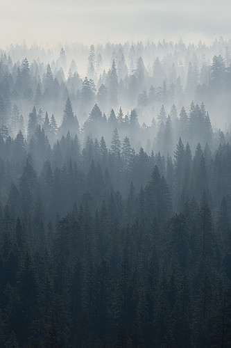 Yosemite morning - smoking valley