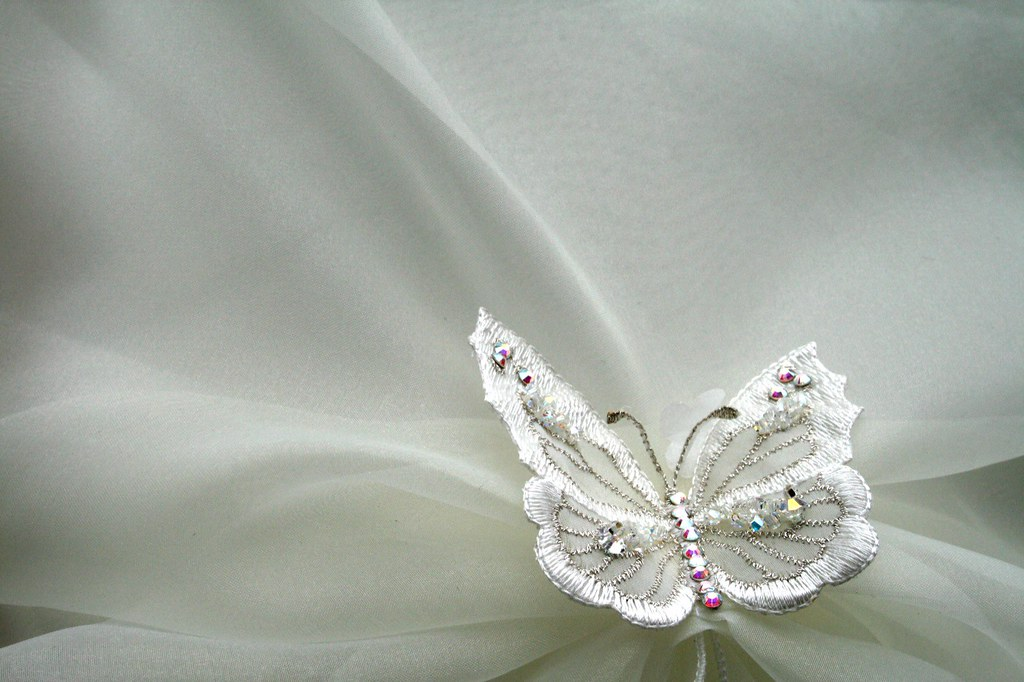 Wedding Dress Touches